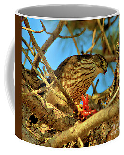 Coffee Mug featuring the photograph Merlin Eating Breakfast by Debbie Stahre