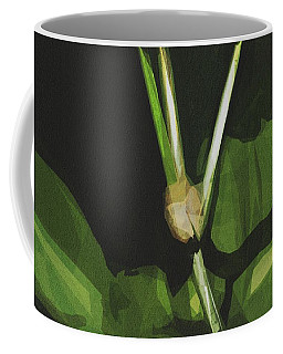 Mexican Bean Beetle Coffee Mugs