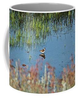 Coffee Mug featuring the photograph Mirror Image by Ann E Robson