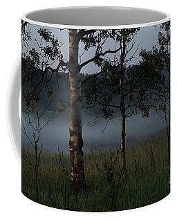 Coffee Mug featuring the photograph Mist by Ann E Robson