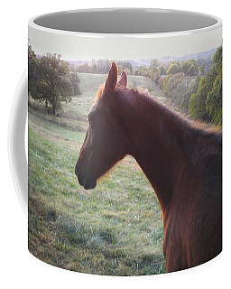 Coffee Mug featuring the photograph Misty by Carl Young