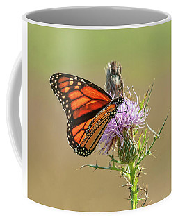Monarch Butterfly On Thistle 1 Coffee Mug