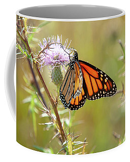 Monarch Butterfly On Thistle 2 Coffee Mug