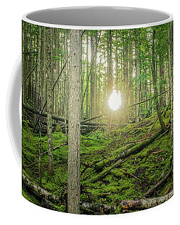 Monashee Forest Sunset Coffee Mug