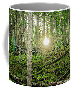 Monashee Forest Sunset With Flare Coffee Mug