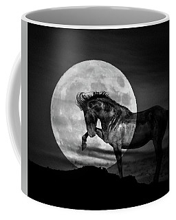 Coffee Mug featuring the photograph Moonlight by Mary Hone