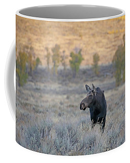 Moose Cow In Gros Ventre Coffee Mug
