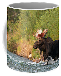 Coffee Mug featuring the photograph Moose Crossing by Mary Hone