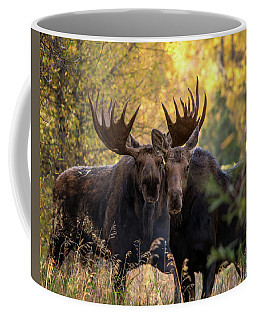 Coffee Mug featuring the photograph Moose Love by Mary Hone