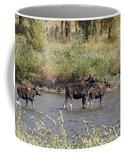 Moose With Twins Coffee Mug