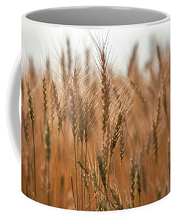 More Wheat Coffee Mug