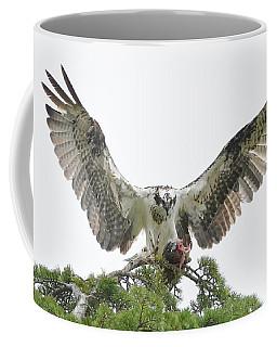 Morning Catch Coffee Mug