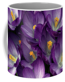 Morning Crocus Coffee Mug