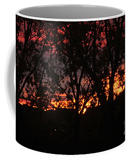 Coffee Mug featuring the photograph Morning Glow by Ann E Robson