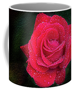 Morning Mist On Red Rose Coffee Mug