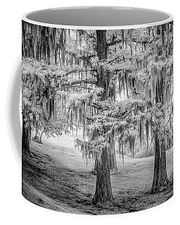 Moss Laden Trees 4132 Coffee Mug