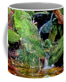 Coffee Mug featuring the photograph Mountain Brook by Meta Gatschenberger