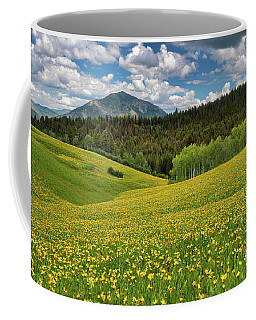 Coffee Mug featuring the photograph Mountain Of Color by Leland D Howard