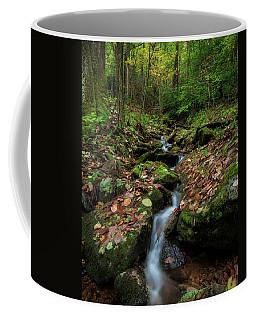 Mountain Stream - Blue Ridge Parkway Coffee Mug