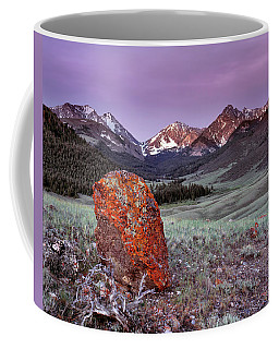 Mountain Textures And Light Coffee Mug