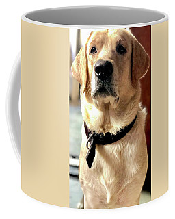 Labrador Dog Coffee Mugs
