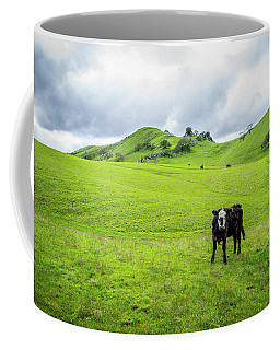 Coffee Mug featuring the photograph Mt Diablo Cow by Scott McGuire