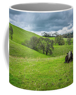 Coffee Mug featuring the photograph Mt. Diablo Spring Hillside Cow by Scott McGuire
