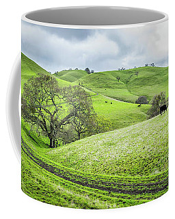 Coffee Mug featuring the photograph Mt. Diablo Spring Hillside by Scott McGuire