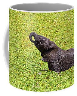Coffee Mug featuring the photograph Mud Bath by Kay Brewer