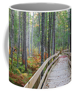 Mud Pond Trail - Pondicherry Wildlife Refuge, New Hampshire Coffee Mug