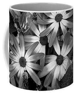 Multiple Daisies Flowers Coffee Mug