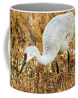 Munching Sandhill Crane Coffee Mug
