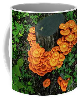 Musrhoom Halo Coffee Mug