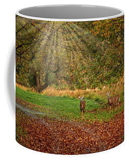 Coffee Mug featuring the photograph My Deer Family by Susan Candelario