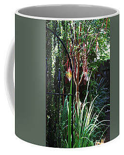 Mystery Fence Coffee Mug