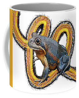 N Is For Northern Banjo Frog Coffee Mug