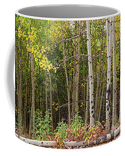 Coffee Mug featuring the photograph Nature Fallen by James BO Insogna