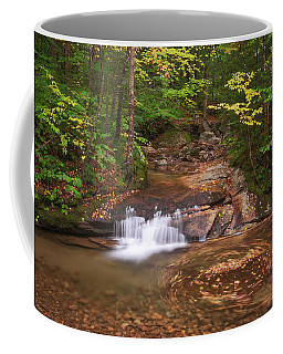 Coffee Mug featuring the photograph Nature's Swirl by Sharon Seaward