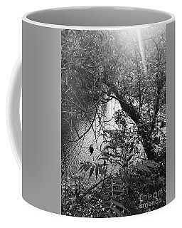 Coffee Mug featuring the photograph Naturescape Black And White by Rachel Hannah