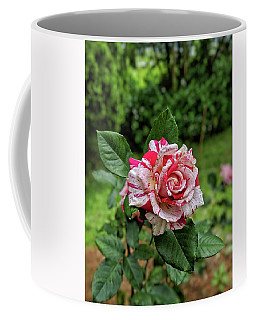 Neil Diamond Rose Coffee Mug