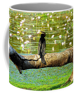 Coffee Mug featuring the photograph Never Mind The Crocodiles, Australasian Darter by Joan Stratton