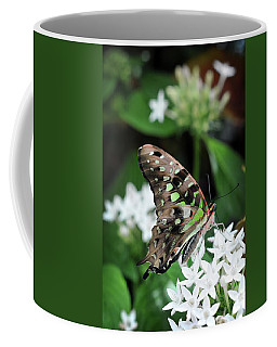 Coffee Mug featuring the photograph Nicely by Michelle Wermuth