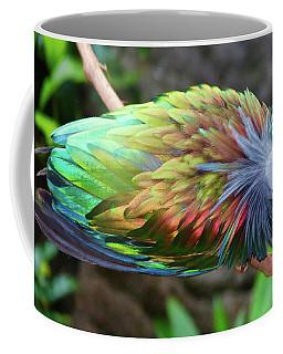 Nicobar Pigeon Coffee Mug