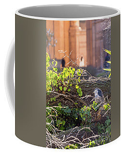 Coffee Mug featuring the photograph Night Heron At The Palace by Kate Brown