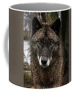 Niko Portrait Coffee Mug