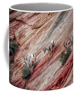 Nimble Mountain Goats 5694 Coffee Mug