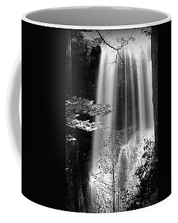 North Carolina Falls Coffee Mug