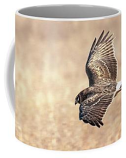 Northern Harrier The Hunt Coffee Mug