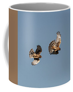 Northern Harriers 7 Coffee Mug