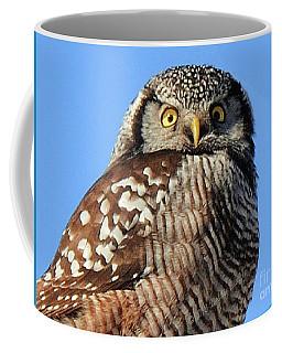 Northern Hawk-owl Coffee Mug